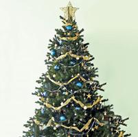 11 dicembre: Serata degli Auguri di Natale